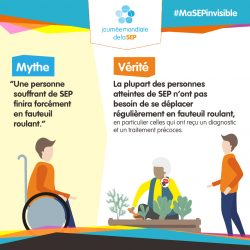 worldms-infographic-french_Myth7-1